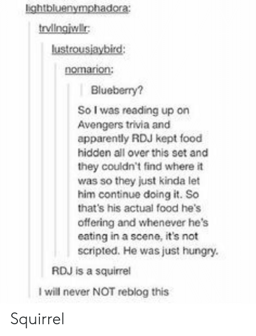 Apparently, Food, and Hungry: lightbluenymphadora  trvlngiwlr  nomarion  Blueberry?  So I was reading up on  Avengers trivia and  apparently RDJ kept food  hidden all over this set and  they couldn't find where it  was so they just kinda let  him continue doing it. So  that's his actual food he's  offering and whenever he's  eating in a scene, it's not  scripted. He was just hungry.  RDJ is a squirrel  I will never NOT reblog this Squirrel