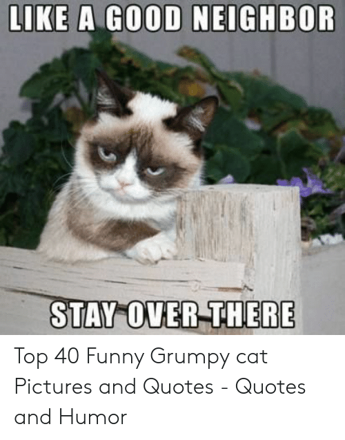 LIKE a GOOD NEIGHBOR RE STAY OVER THE Top 40 Funny Grumpy ...