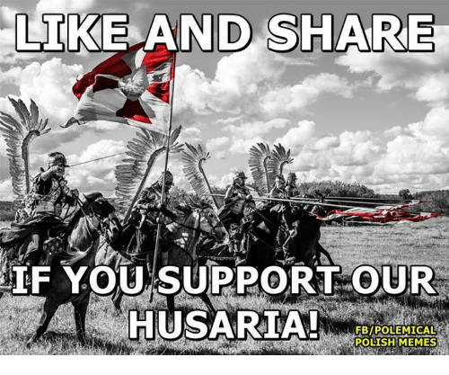 Polish Memes: LIKE AND SHARE  IF YOU SUPPORT OUR  HUSARIA!  FBIPOLEMICALR  POLISH MEMES