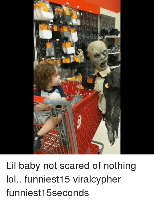 Funny, Lol, and Baby: Lil baby not scared of nothing lol.. funniest15 viralcypher funniest15seconds