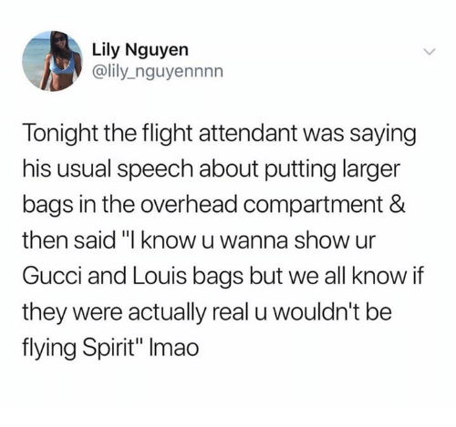 "Gucci, Flight, and Spirit: Lily Nguyen  @lily_nguyennnn  Tonight the flight attendant was saying  his usual speech about putting larger  bags in the overhead compartment &  then said ""I know u wanna show ur  Gucci and Louis bags but we all know if  they were actually real u wouldn't be  flying Spirit"" Imao"