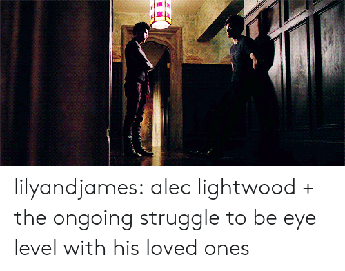 Struggle, Target, and Tumblr: lilyandjames:  alec lightwood + the ongoing struggle to be eye level with his loved ones