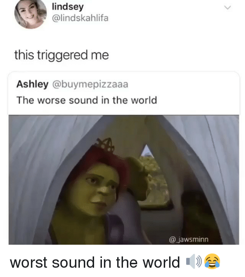 Memes, World, and 🤖: lindsey  @lindskahlifa  this triggered me  Ashley @buymepizzaaa  The worse sound in the world  @jawsminn worst sound in the world 🔊😂
