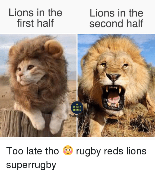 Memes, Lions, and Reds: Lions in the  first haltf  Lions in the  second half  RUGBY  MEMES Too late tho 😳 rugby reds lions superrugby