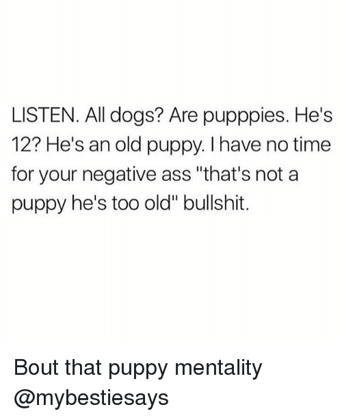 """Bullshitted: LISTEN. All dogs? Are pupppies. He's  12? He's an old puppy. I have no time  for your negative ass """"that's not a  puppy he's too old"""" bullshit. Bout that puppy mentality @mybestiesays"""