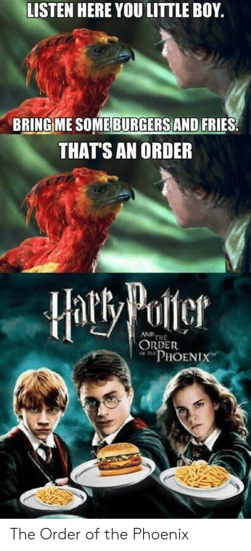 Phoenix, Boy, and Potter: LISTEN HERE YOU LITTLE BOY.  BRING ME SOME BURGERS AND FRIES  THAT'S AN ORDER  Hatty Potter  AND THE  ORDER  PHOENIX The Order of the Phoenix