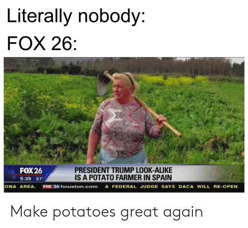 Farmer: Literally nobody:  FOX 26  PRESIDENT TRUMP LOOK-ALIKE  IS A POTATO FARMER IN SPAIN  FOX 26  5:39 57  ONA AREA  FOX 26 houston.com A FEDERAL JUDGE SAYS DACA WILL RE-OPEN Make potatoes great again