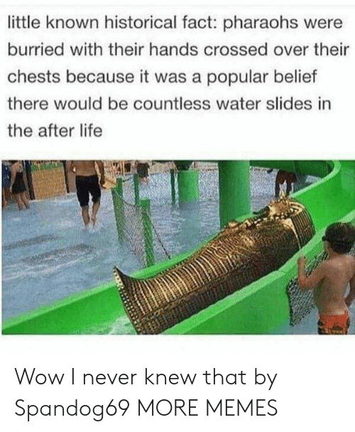 Belief: little known historical fact: pharaohs were  burried with their hands crossed over their  chests because it was a popular belief  there would be countless water slides in  the after life Wow I never knew that by Spandog69 MORE MEMES