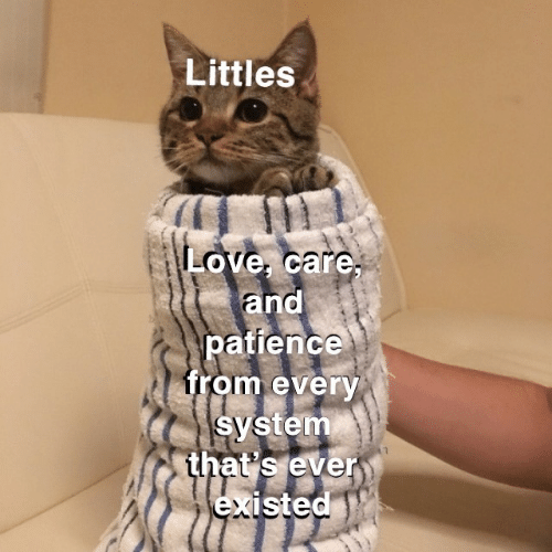 Love, Patience, and System: Littles  Love, care,  and  patience  from every  system  that's ever  existed