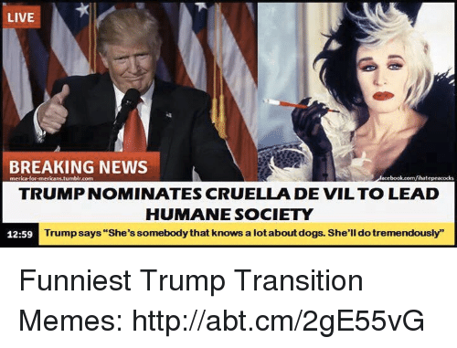"Funniest Trump: LIVE  BREAKING NEWS  merica for mericani.tum  blr.com  lihatepeacocks  TRUMP NOMINATES CRUELLA DE VIL TO LEAD  HUMANE SOCIETY  Trump says ""She's somebodythat knows a lotaboutdogs. She'll dotremendously""  12:59 Funniest Trump Transition Memes: http://abt.cm/2gE55vG"