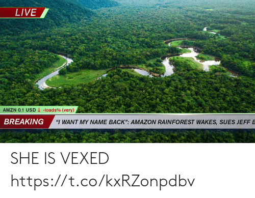 """Amazon, Live, and Back: LIVE  -loads % (very)  AMZN 0.1 USD  BREAKING  """"I WANT MY NAME BACK"""": AMAZON RAINFOREST WAKES, SUES JEFFB SHE IS VEXED https://t.co/kxRZonpdbv"""