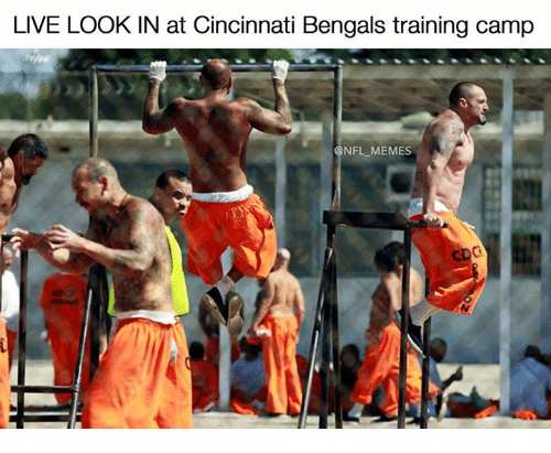 Cincinnati Bengals: LIVE LOOK IN at Cincinnati Bengals training camp  @NFL MEMES