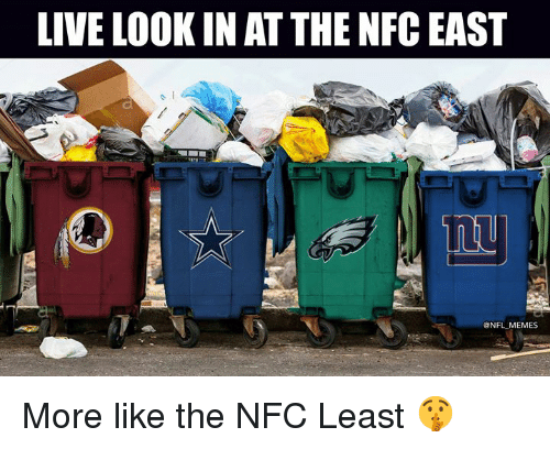 Memes, Nfl, and Live: LIVE LOOK IN AT THE NFC EAS  @NFL MEMES More like the NFC Least 🤫