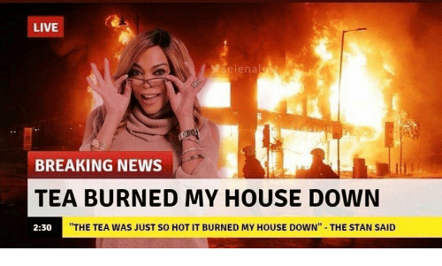 """My House, News, and Stan: LIVE  seienalst  BREAKING NEWS  TEA BURNED MY HOUSE DOWN  """"THE TEA WAS JUST SO HOT IT BURNED MY HOUSE DOWN""""  THE STAN SAID  2:30"""