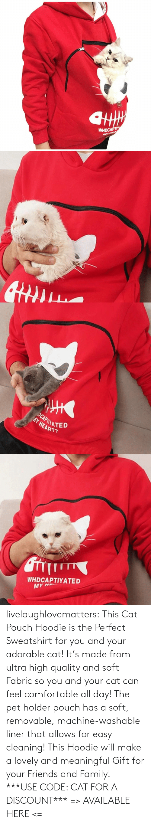 sweatshirt: livelaughlovematters: This Cat Pouch Hoodie is the Perfect Sweatshirt for you and your adorable cat! It's made from ultra high quality and soft Fabric so you and your cat can feel comfortable all day! The pet holder pouch has a soft, removable, machine-washable liner that allows for easy cleaning! This Hoodie will make a lovely and meaningful Gift for your Friends and Family!  ***USE CODE: CAT FOR A DISCOUNT*** => AVAILABLE HERE <=