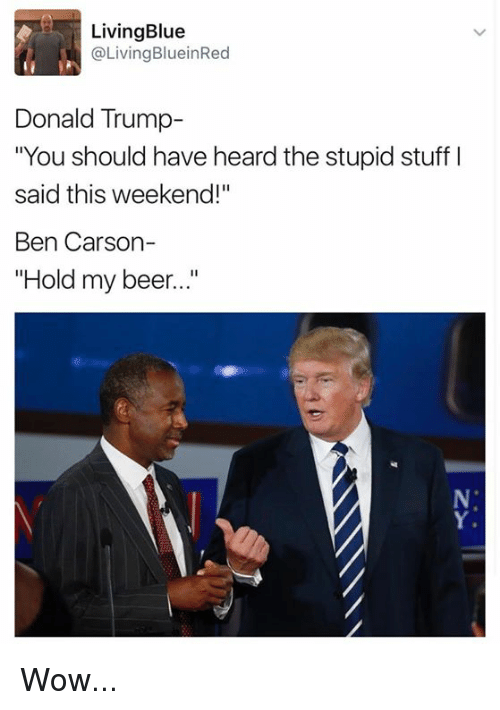 """Ben Carson, Memes, and 🤖: Living Blue  @Living BlueinRed  Donald Trump  """"You should have heard the stupid stuff l  said this weekend!  Ben Carson-  Hold my beer..."""" Wow..."""