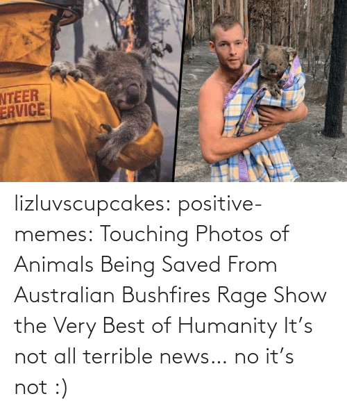 Australian: lizluvscupcakes: positive-memes:  Touching Photos of Animals Being Saved From Australian Bushfires Rage Show the Very Best of Humanity   It's not all terrible news…  no it's not :)