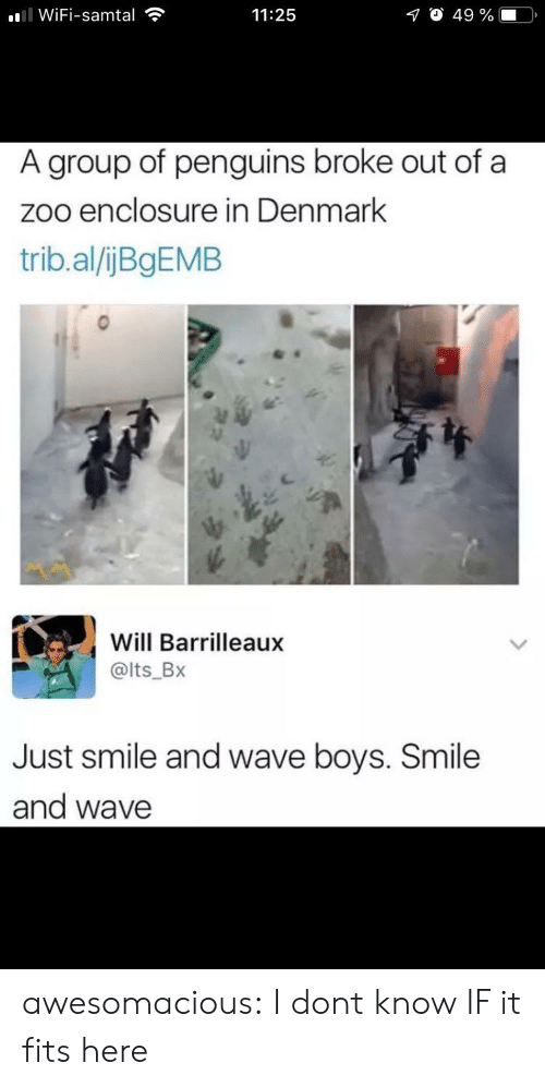 zoo: ll WiFi-samtal  O 49 %  11:25  A group of penguins broke out of a  zoo enclosure in Denmark  trib.al/ijBgEMB  Will Barrilleaux  @lts_Bx  Just smile and wave boys. Smile  and wave awesomacious:  I dont know IF it fits here