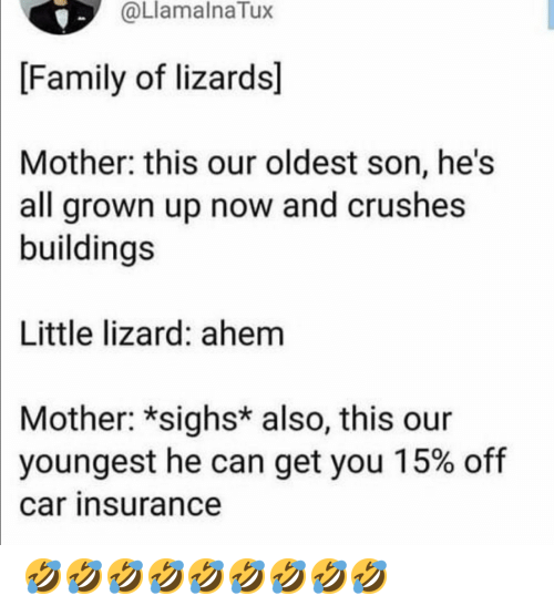 insurance: @LlamalnaTux  [Family of lizards]  Mother: this our oldest son, he's  all grown up now and crushes  buildings  Little lizard: ahem  Mother: *sighs* also, this our  youngest he can get you 15% off  car insurance 🤣🤣🤣🤣🤣🤣🤣🤣🤣
