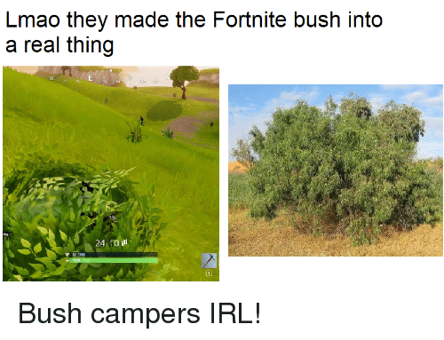 Lmao They Made The Fortnite Bush Into A Real Thing Ne 24 10 Il 0190