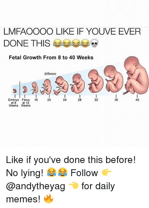Memes, Lying, and 🤖: LMFAOOOO LIKE IF YOUVE EVER  DONE THIS  Fetal Growth From 8 to 40 Weeks  ofrsucc  40  Embryo Fetus  16  36  at 8  at 12  Weeks Weeks Like if you've done this before! No lying! 😂😂 Follow 👉 @andytheyag 👈 for daily memes! 🔥