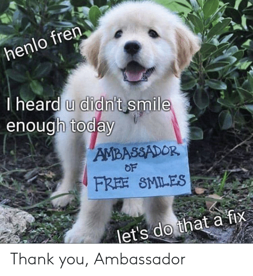 Af, Thank You, and Free: lo fren  hen  I heard u didn't smile  enough today  AMBASSADOR  OF  FREE SMILES  let's do that af Thank you, Ambassador