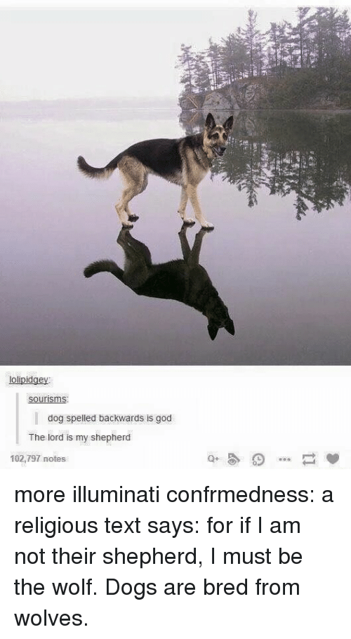 Dogs, God, and Illuminati: lolipidgey  dog spelled backwards is god  The lord is my shepherd  102,797 notes more illuminati confrmedness: a religious text says: for if I am not their shepherd, I must be the wolf. Dogs are bred from wolves.