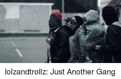 Tumblr, Gang, and Blog: lolzandtrollz:  Just Another Gang