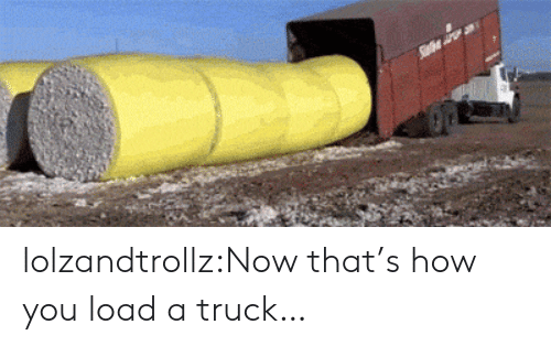 Now Thats: lolzandtrollz:Now that's how you load a truck…