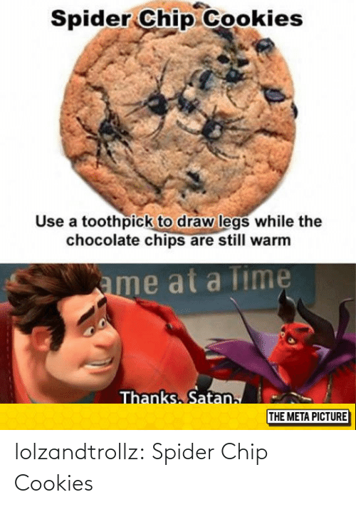 Chip: lolzandtrollz:  Spider Chip Cookies