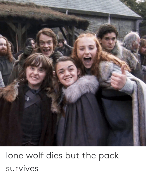 Dank, Wolf, and 🤖: lone wolf dies but the pack survives