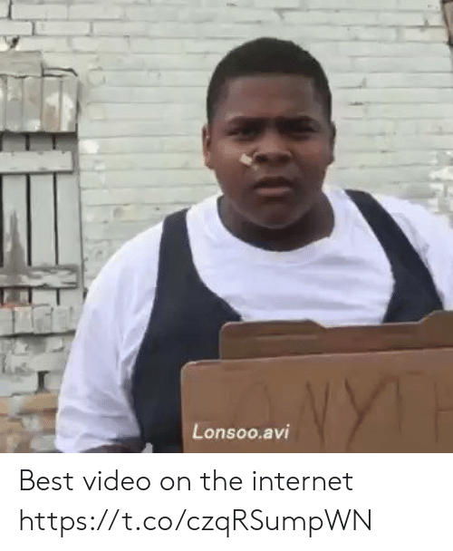 Internet, Best, and Video: Lonsoo.avi Best video on the internet https://t.co/czqRSumpWN