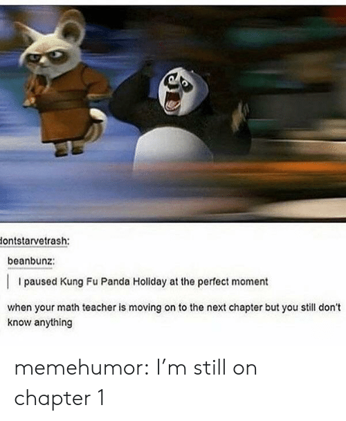 Kung Fu Panda: lontstarvetrash:  beanbunz:  I paused Kung Fu Panda Holiday at the perfect moment  when your math teacher is moving on to the next chapter but you still don't  know anything memehumor:  I'm still on chapter 1