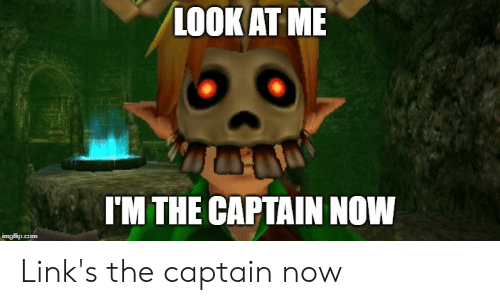 Zelda, Links, and Com: LOOK AT ME  I'M THE CAPTAIN NOW  imgflip.com Link's the captain now