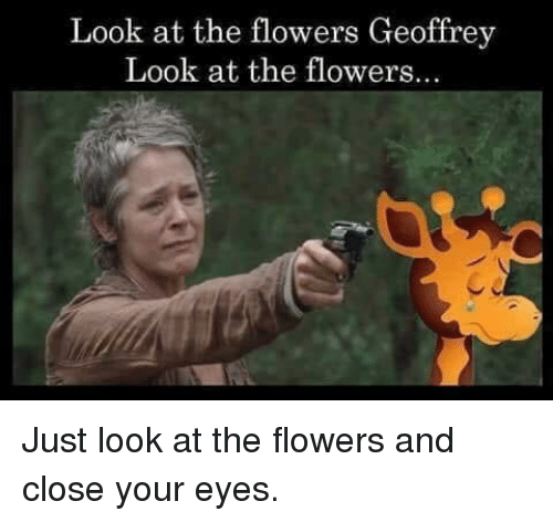 Flowers, Toosoon, and Close Your Eyes: Look at the flowers Geoffrey  Look at the flowers.