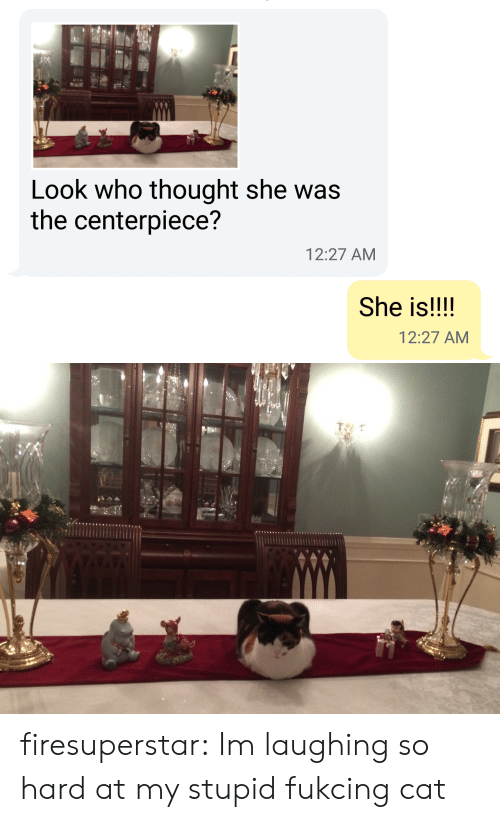 Target, Tumblr, and Blog: Look who thought she was  the centerpiece?  12:27 AM  She is!!!!  12:27 AM firesuperstar:  Im laughing so hard at my stupid fukcing cat