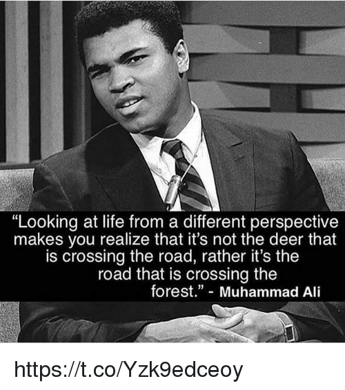 "Ali, Deer, and Life: ""Looking at life from a different perspective  makes you realize that it's not the deer that  is crossing the road, rather it's the  road that is crossing the  forest."" Muhammad Ali https://t.co/Yzk9edceoy"