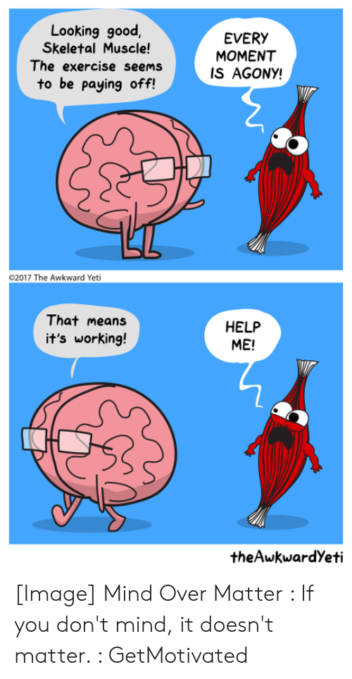 looking good: Looking good  Skeletal Muscle!  The exercise seems  EVERY  MOMENT  IS AGONY!  to be paying off!  2017 The Awkward Yeti  That means  HELP  ME!  it's working!  theAwkwardYeti [Image] Mind Over Matter : If you don't mind, it doesn't matter. : GetMotivated