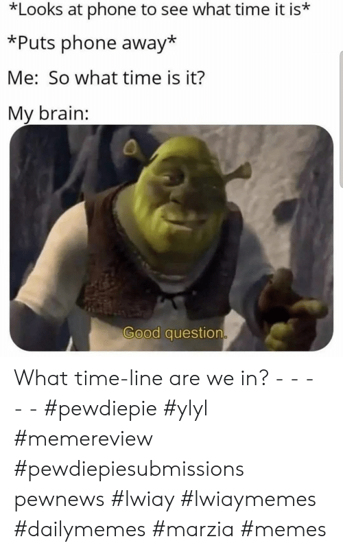Memes, Phone, and Brain: *Looks at phone to see what time it is*  *Puts phone away*  Me: So what time is it?  My brain:  Good question What time-line are we in? - - - - - #pewdiepie #ylyl #memereview #pewdiepiesubmissions pewnews #lwiay #lwiaymemes #dailymemes #marzia #memes