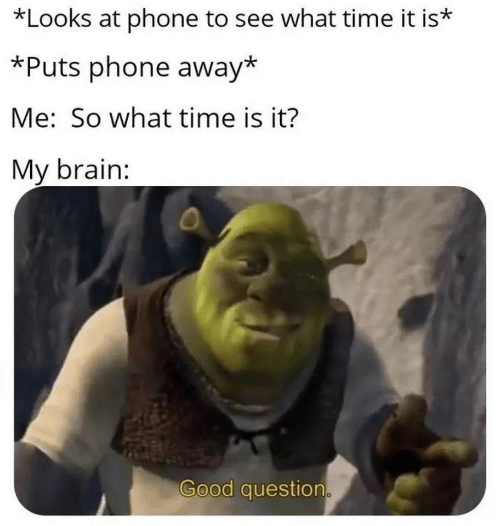 Phone, Brain, and Good: *Looks at phone to see what time it is*  *Puts phone away*  Me: So what time is it?  My brain:  Good question.