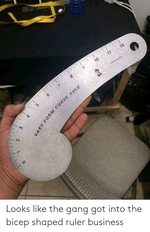 Business: Looks like the gang got into the bicep shaped ruler business