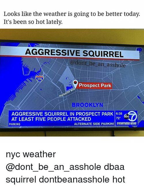 🅱️ 25+ Best Memes About Nyc Weather | Nyc Weather Memes