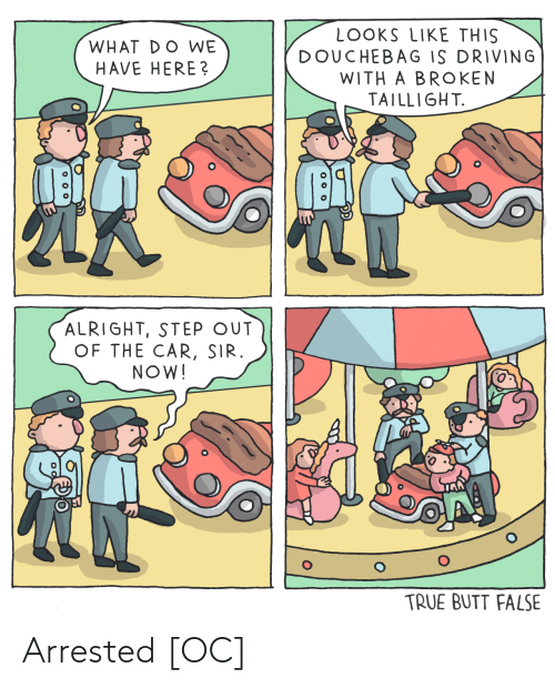 Driving: LOOKS LIKE THIS  DOUCHEBAG IS DRIVING  WITH A BROKEN  TAILLIGHT.  WHAT DO WE  HAVE HERE?  ALRIGHT, STEP OUT  OF THE CAR, SIR.  NOW!  TRUE BUTT FALSE  o 00 Arrested [OC]