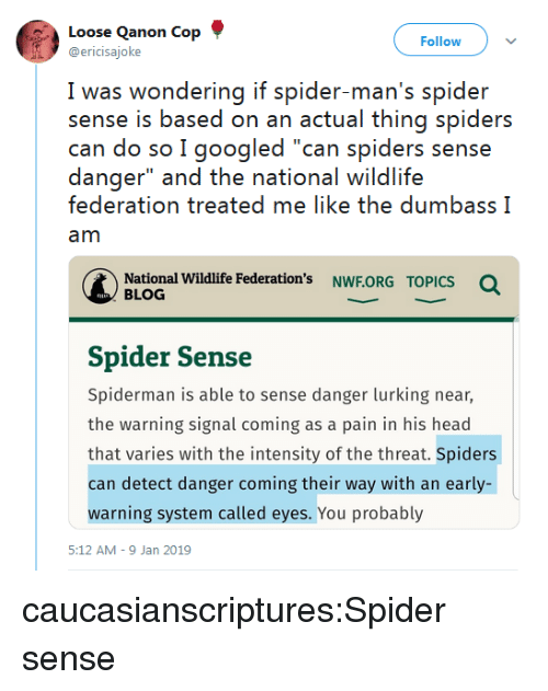 "Head, Lurking, and Spider: Loose Qanon Cop  @ericisajoke  Follow  I was wwondering if spider man's spider  sense is based on an actual thing spiders  can do so I googled ""can spiders sense  danger"" and the national wildlife  federation treated me like the dumbass I  am  National Wildlife Federation's NWF.ORG  Q  TOPICS  BLOG  Spider Sense  Spiderman is able to sense danger lurking near,  the warning signal coming as a pain in his head  that varies with the intensity of the threat. Spiders  can detect danger coming their way with an early-  warning system called eyes. You probably  5:12 AM-9 Jan 2019 caucasianscriptures:Spider sense"