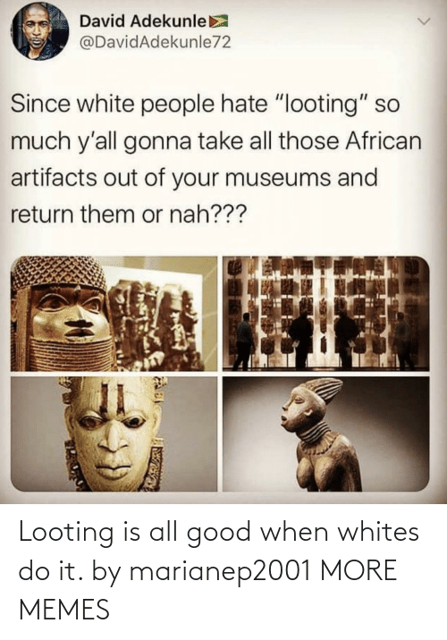 Whites: Looting is all good when whites do it. by marianep2001 MORE MEMES