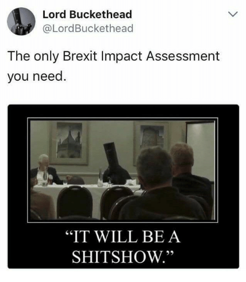 """Lord Buckethead: Lord Buckethead  @LordBuckethead  The only Brexit Impact Assessment  you need.  """"IT WILL BE A  SHITSHOW."""""""
