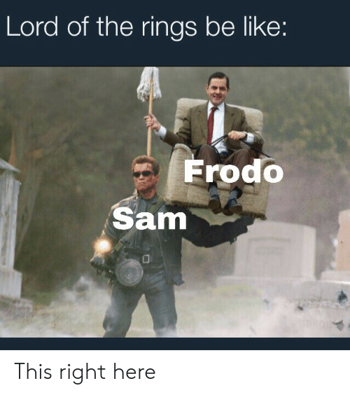 frodo: Lord of the rings be like:  Frodo  Sam This right here