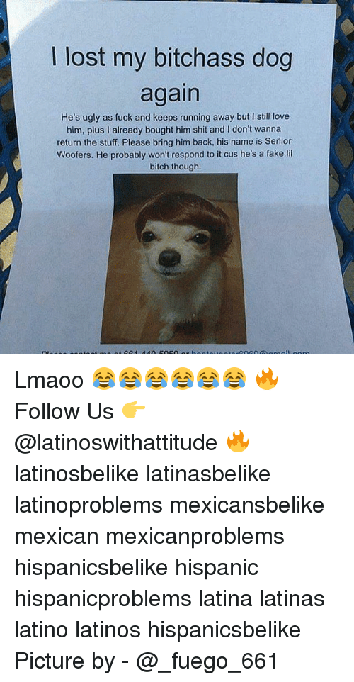 Bitch, Fake, and Latinos: lost my bitchass dog  again  He's ugly as fuck and keeps running away but I still love  him, plus l already bought him shit and don't wanna  return the stuff. Please bring him back, his name is Senior  Woofers. He probably won't respond to it cus he's a fake lil  bitch though. Lmaoo 😂😂😂😂😂😂 🔥 Follow Us 👉 @latinoswithattitude 🔥 latinosbelike latinasbelike latinoproblems mexicansbelike mexican mexicanproblems hispanicsbelike hispanic hispanicproblems latina latinas latino latinos hispanicsbelike Picture by - @_fuego_661