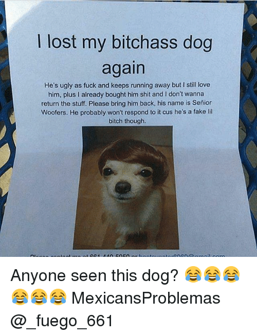 Bitch, Fake, and Love: lost my bitchass dog  again  He's ugly as fuck and keeps running away but I still love  him, plus l already bought him shit and don't wanna  return the stuff. Please bring him back, his name is Senior  Woofers. He probably won't respond to it cus he's a fake lil  bitch though. Anyone seen this dog? 😂😂😂😂😂😂 MexicansProblemas @_fuego_661