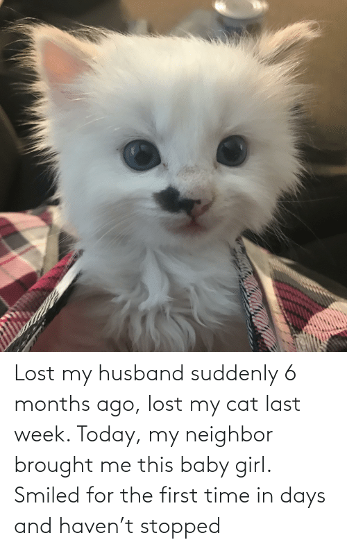 Husband: Lost my husband suddenly 6 months ago, lost my cat last week. Today, my neighbor brought me this baby girl. Smiled for the first time in days and haven't stopped